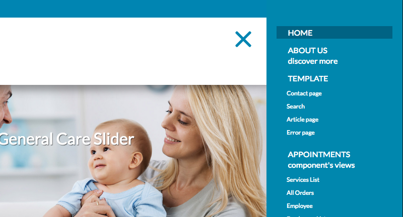 Healthcare Template - Responsive menu